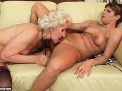 Молодые и старые лесбийские милашки лижут так хорошо